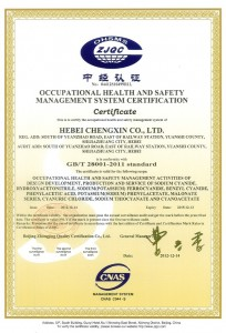 Occupational_Health_and_Safety_management_system_certification