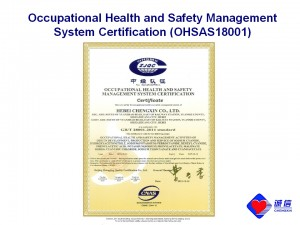 occupational_health_n_safety_management_system ...